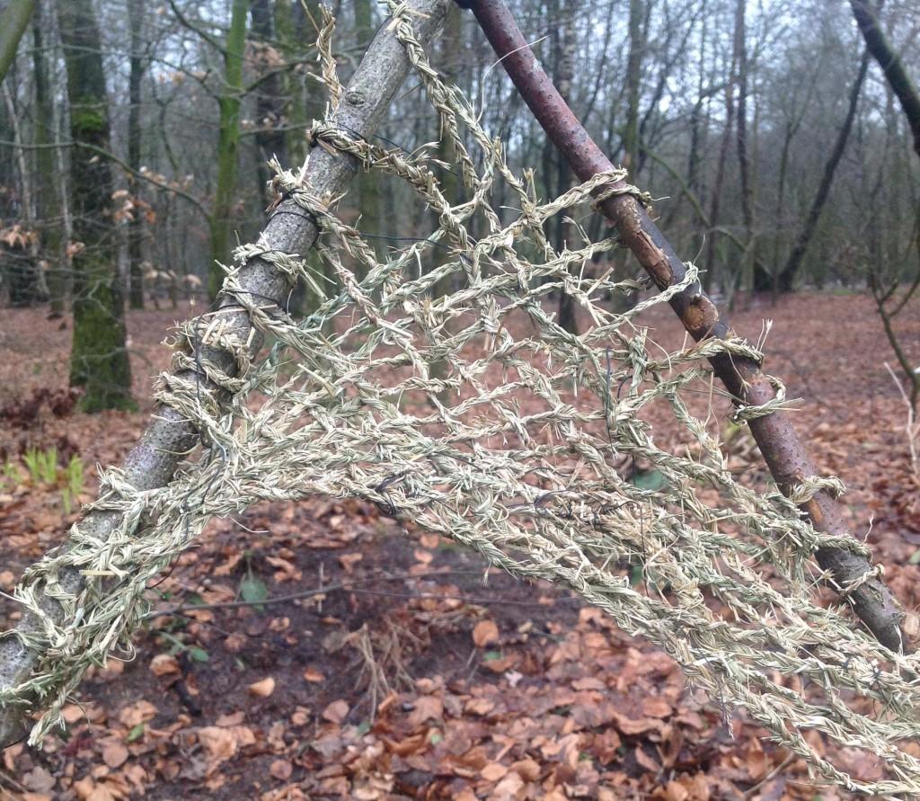 grasvlecht in bos2